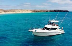Auramarina - rubiconfishing