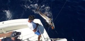 Rubicon fishing Lanzarote
